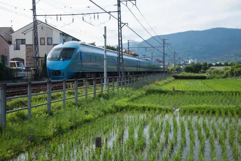 2018-06-17 酒匂川~富士見塚~渋沢丘陵他022.jpg