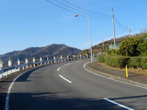 170128 渋沢丘陵他014.jpg