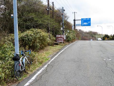 170423-椿ライン~芦ノ湖018-1.jpg