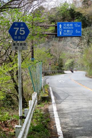 170423 椿ライン~芦ノ湖016.jpg