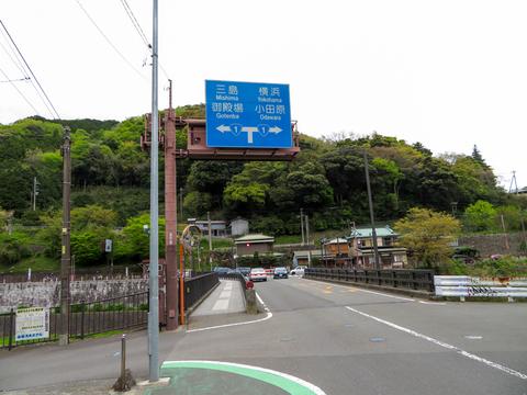 170423 椿ライン~芦ノ湖031.jpg