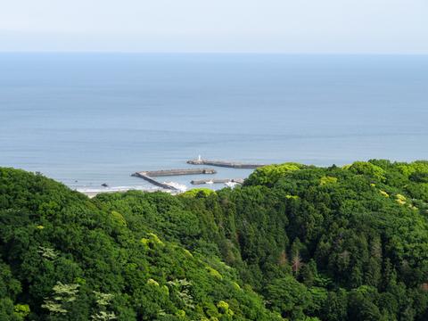 170514湘南平ポタ007-1.jpg