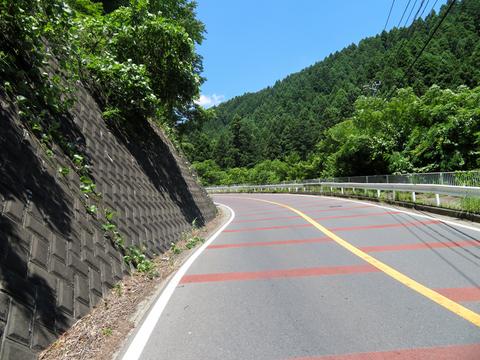 170715 宮ケ瀬~道志ダム~大垂水峠006.jpg