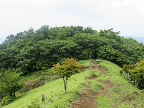 17hayato y2006.jpg