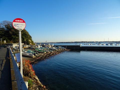 2017-12-30 Miura026.jpg