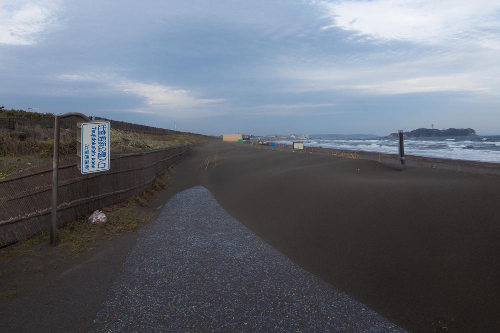2018-04-07ポタ014.jpg