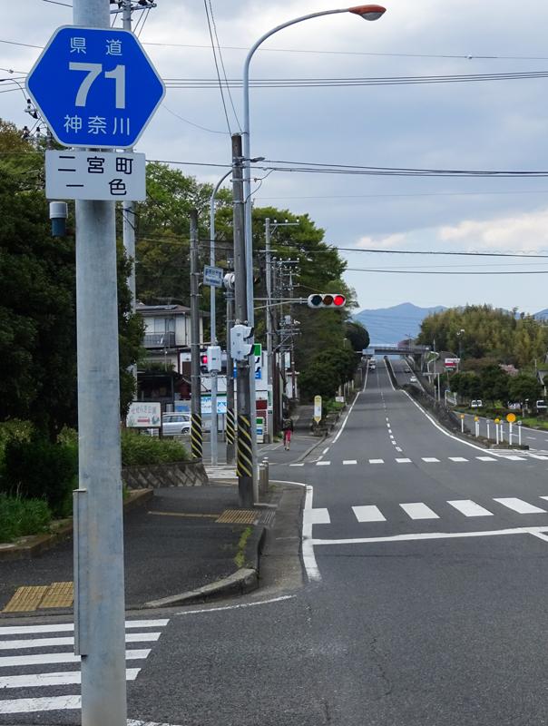 2018-04-08 渋沢丘陵など004.jpg