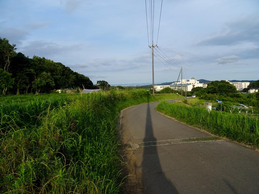 2018-06-17 酒匂川~富士見塚~渋沢丘陵他012.jpg