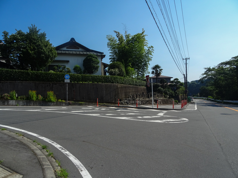 2018-07-15 足柄峠-016.jpg
