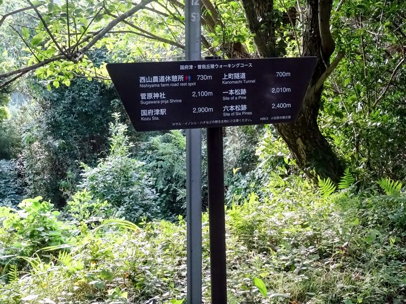 2018-8末-曽我丘陵ウォーキング-005.jpg