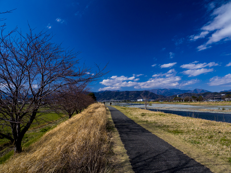 2019-03minamiashigararaide-005.jpg