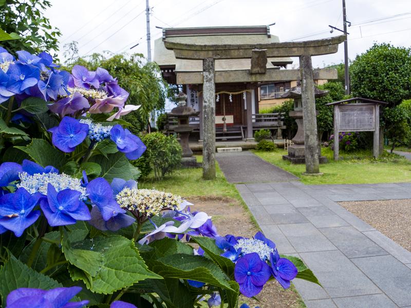 2019-07駿河-003.jpg