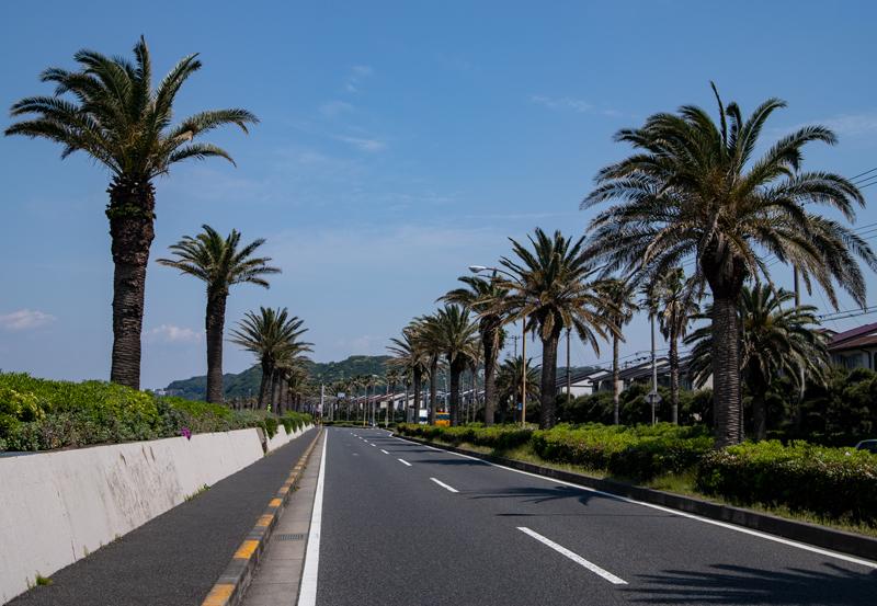 2019-5-三浦半島一周ライド-018.jpg