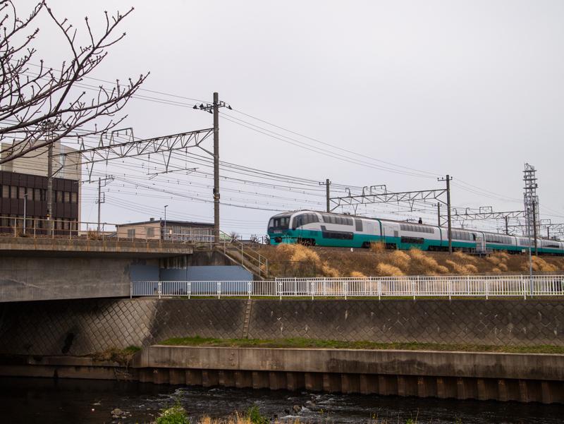 20190310ポタ007.jpg