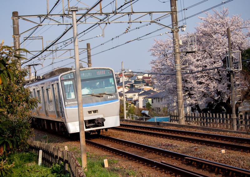 201904hikichigawa-019-2.jpg