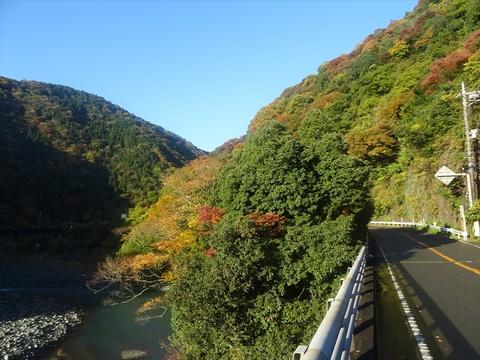 DSC161120明神峠~山中湖0011.JPG