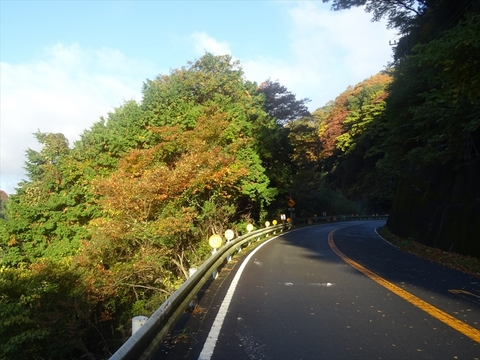 DSC161120明神峠~山中湖0012.JPG