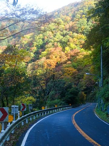 DSC161120明神峠~山中湖0013.jpg