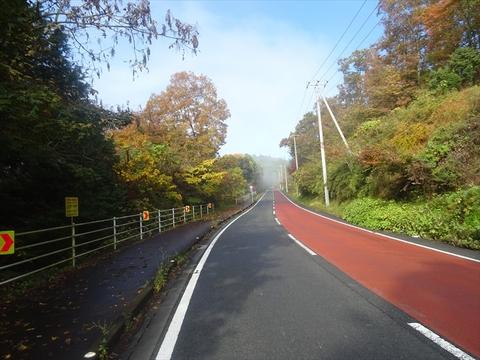 DSC161120明神峠~山中湖0018.JPG
