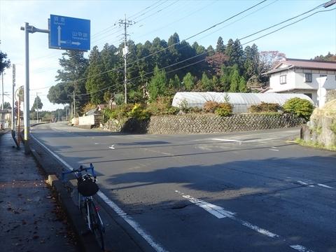 DSC161120明神峠~山中湖0022.JPG