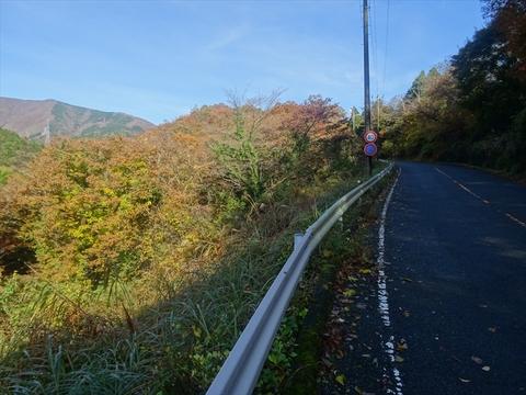 DSC161120明神峠~山中湖0026.JPG