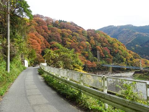 DSC161120明神峠~山中湖0056.jpg