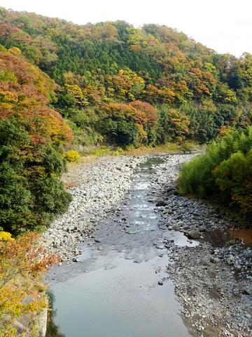 DSC161120明神峠~山中湖0057.jpg
