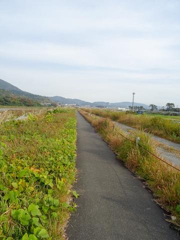 DSC161120明神峠~山中湖0060.jpg